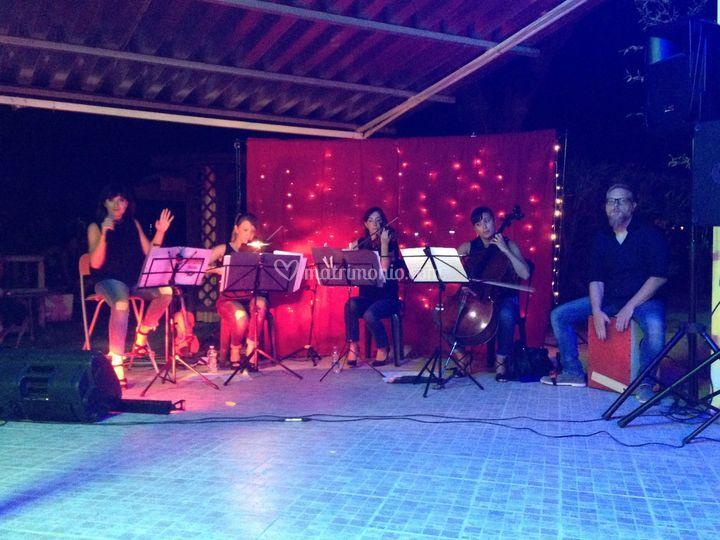 Mariquita Ensemble, pop rock