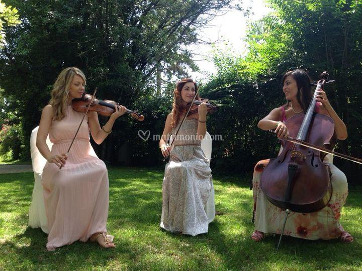 Trio Mariquita