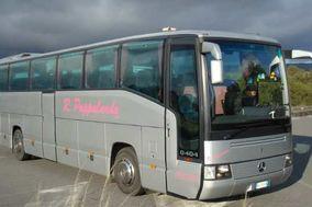 Pappalardo Bus