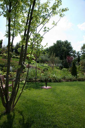 Dettaglio del giardino