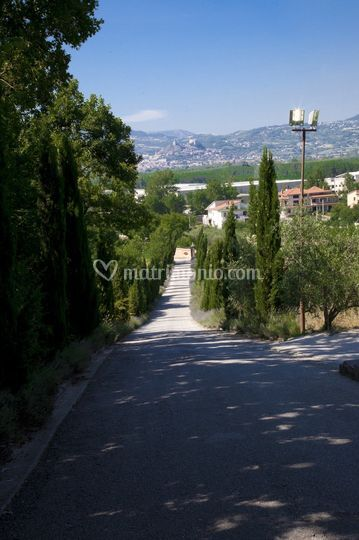 Strada di accesso alla villa