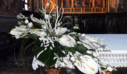 Ikebana di Francesco Adani 1