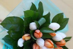 Garden Flor
