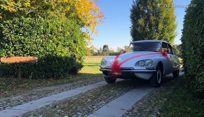 Citroen DS DSpecial