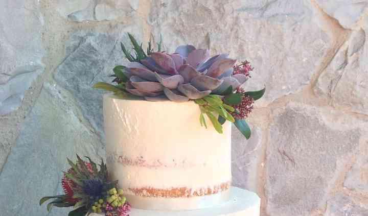 Naked Cake con succulente