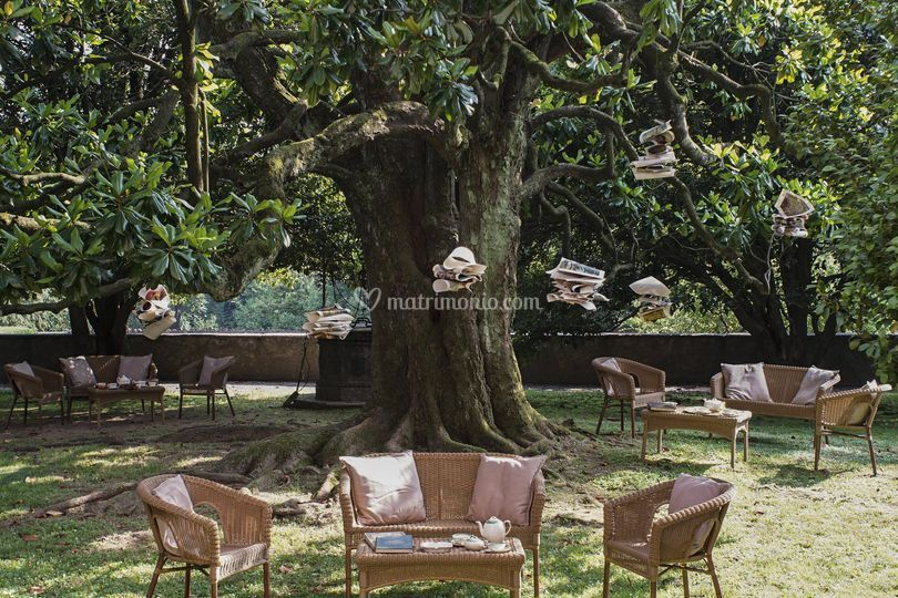 Un te all'ombra della magnolia