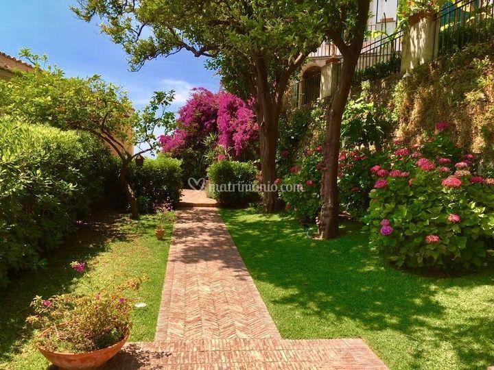 Fiori e aranci nei giardini di palazzo suriano foto 10 - Giardini e fiori ...