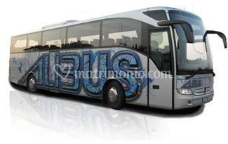 Noleggio bus da 8 a 77 posti