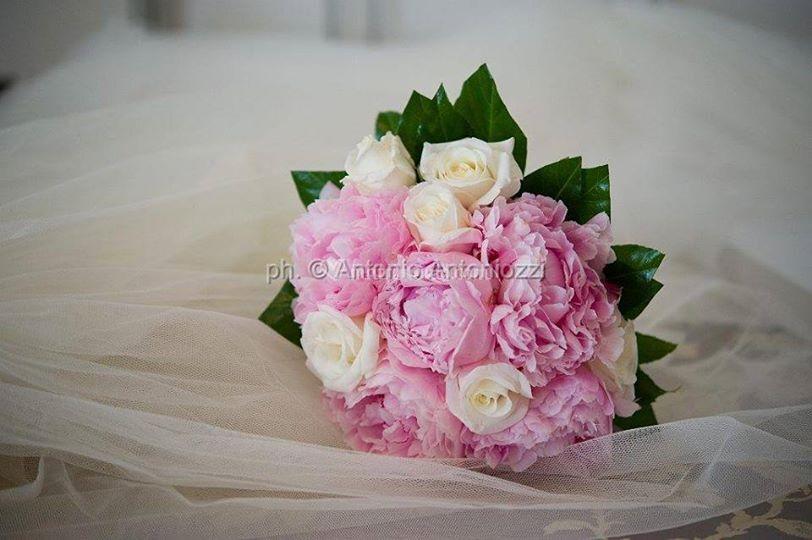 Peonie e rose
