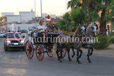 Cavalli pura razza spagnola
