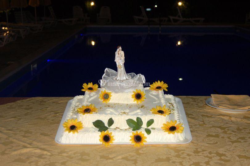 Torta nuziale di il giardino del sole foto 10 - Il giardino del sole ...