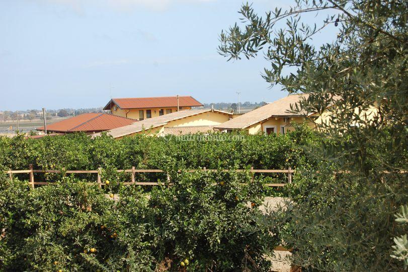 Vista del complesso da lontano di il giardino del sole - Il giardino del sole ...
