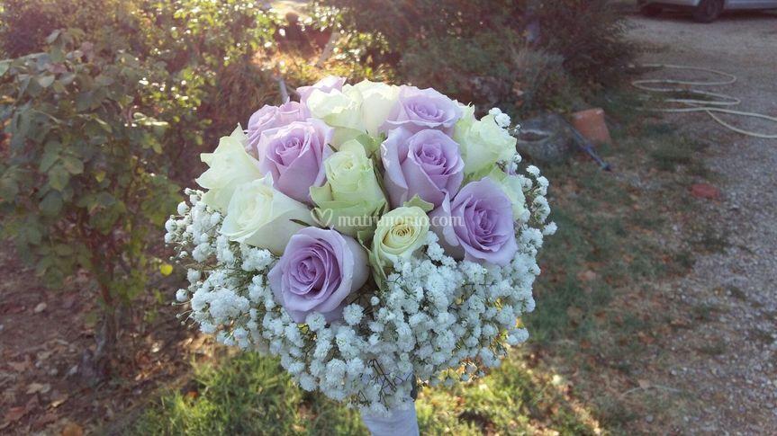 Les fleurs di Paola e Co.