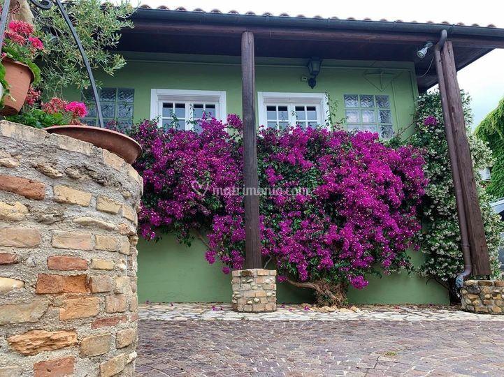 I colori della Villa