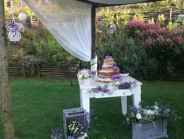Matrimonio e Torta Eco-chic!