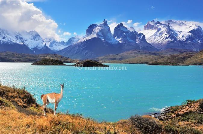 Puerto Natales, Cile