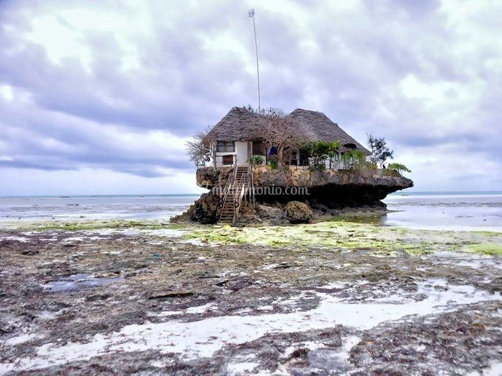 Viaggio di Nozze a Zanzibar