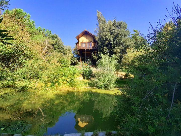 Casa sull'Albero Awen