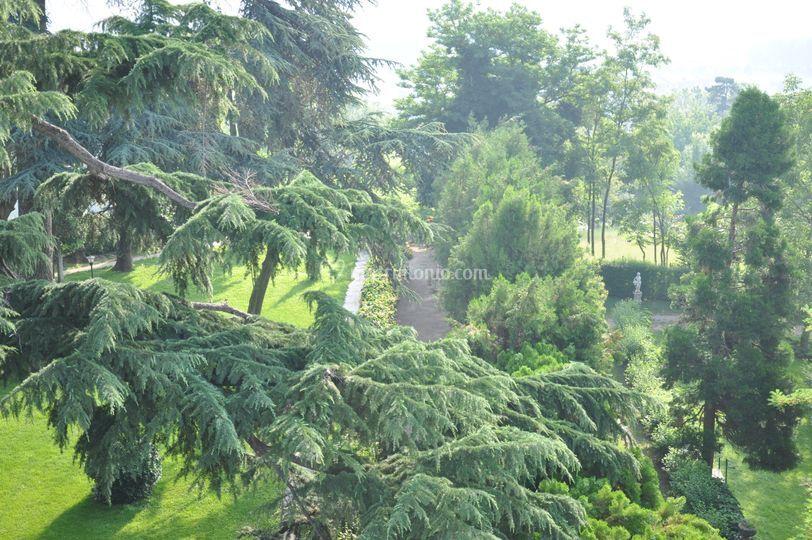 Angolo del parco Il Basinetto
