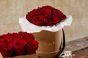Miaga Rose
