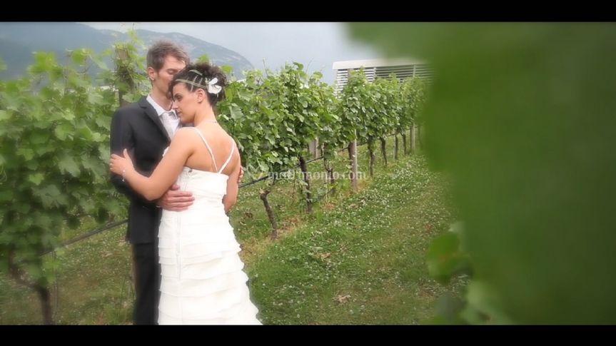 Foto tratta da video