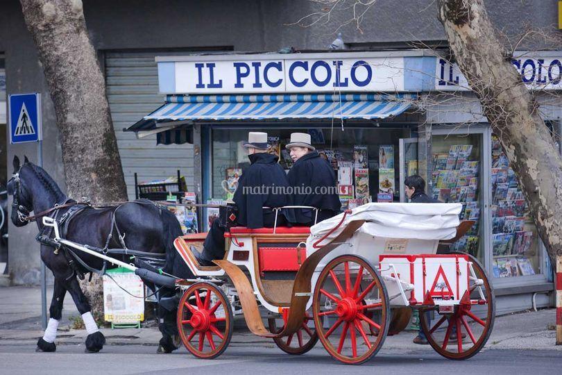 Carrozza a Trieste