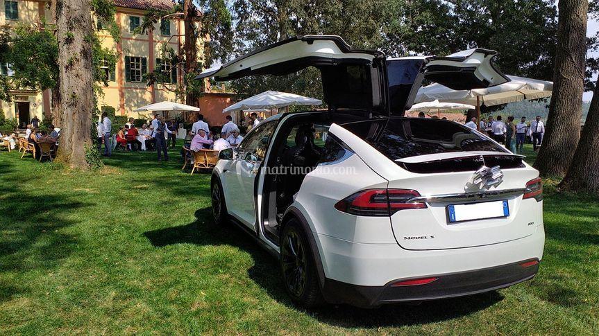 TeslaDream