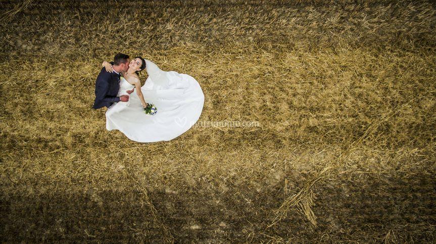 Foto aerea campo di grano