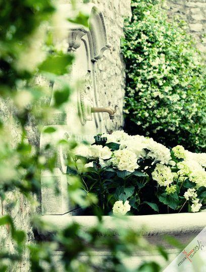 Dettaglio floreale in veranda