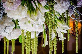 Signorelli Art & Flower Craft