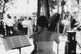 Harp & co.