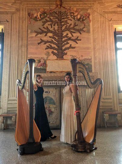 Duo d'arpe classico