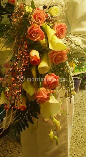 Bouquet 22 marzo 2008