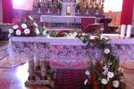 Allestimento San Francesco di Il Tulipano