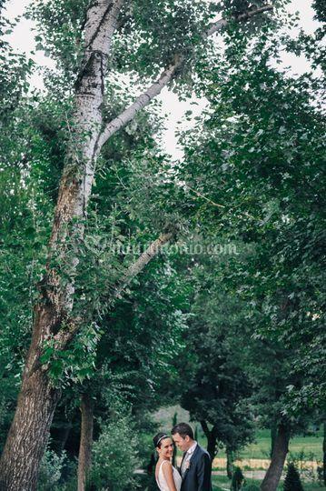 © Contrasti | fotostudio