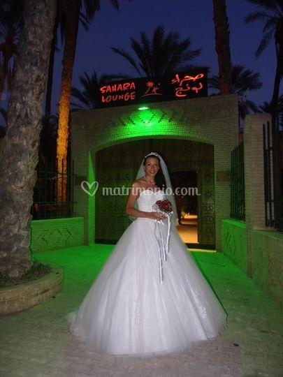 Wedding in Sahara Lounge