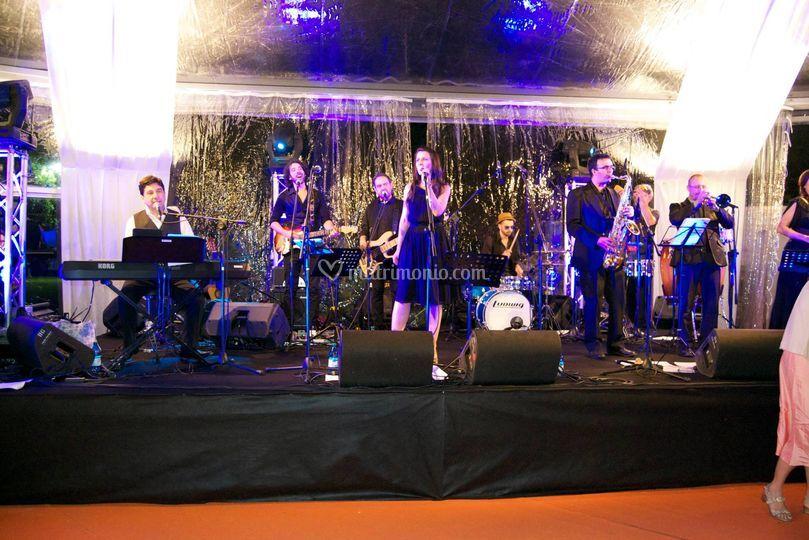 Elodea big band