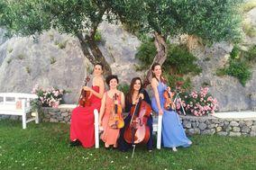 Zahir Quartet