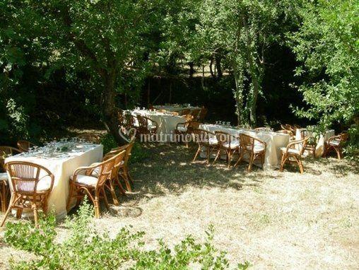 Borgo cerquelle for Allestimento giardino matrimonio