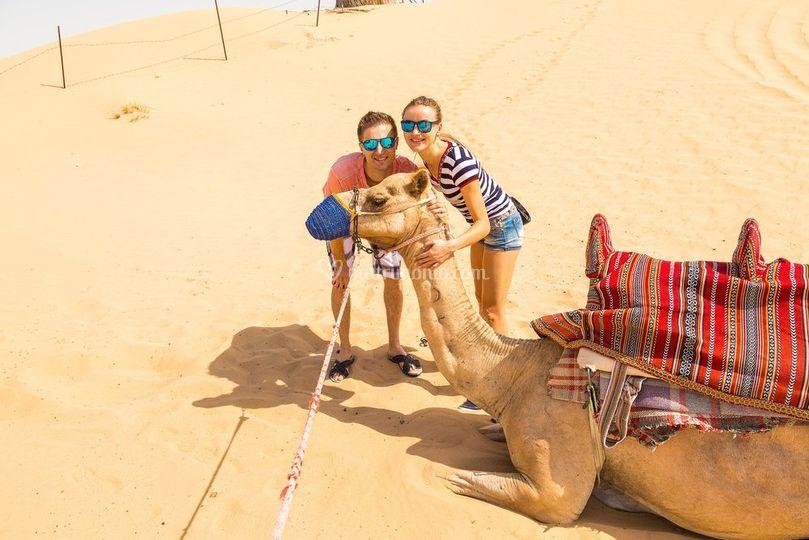 Avventure nel deserto...