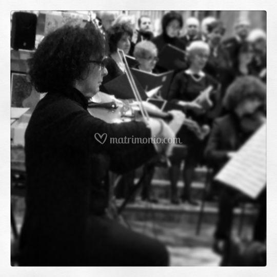 In orchestra concerto
