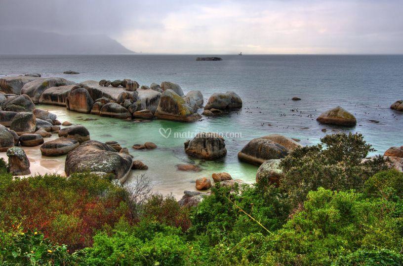 Boulder beach - south africa