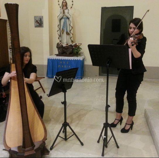 Arpa & viola