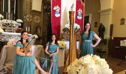 Massara Special Events