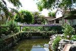 Dettaglio laghetto carpe di Villa C� Bianca