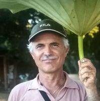 Roberto Mora
