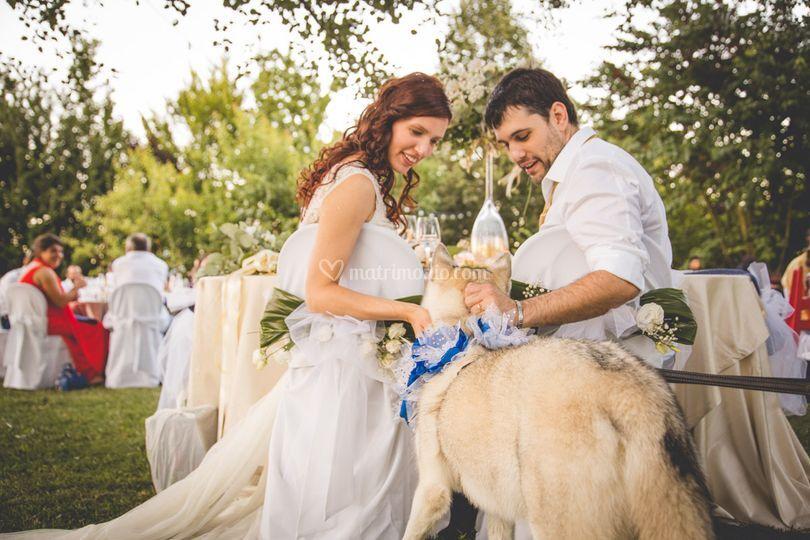Misha con gli sposi
