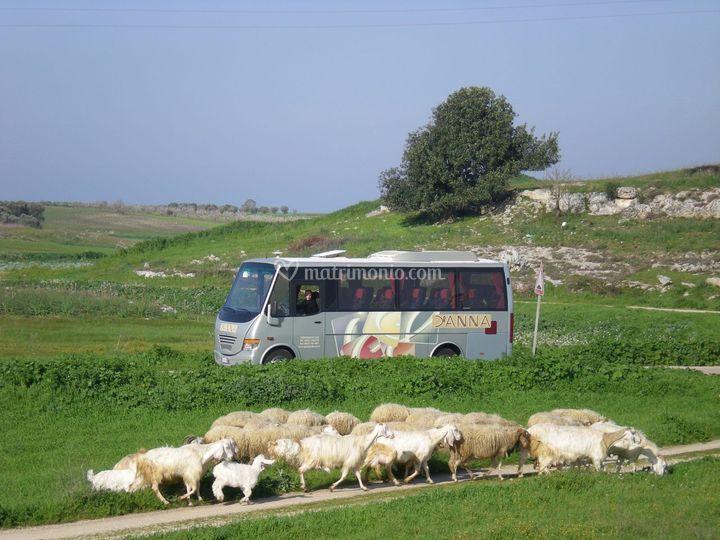 La Puglia autentica