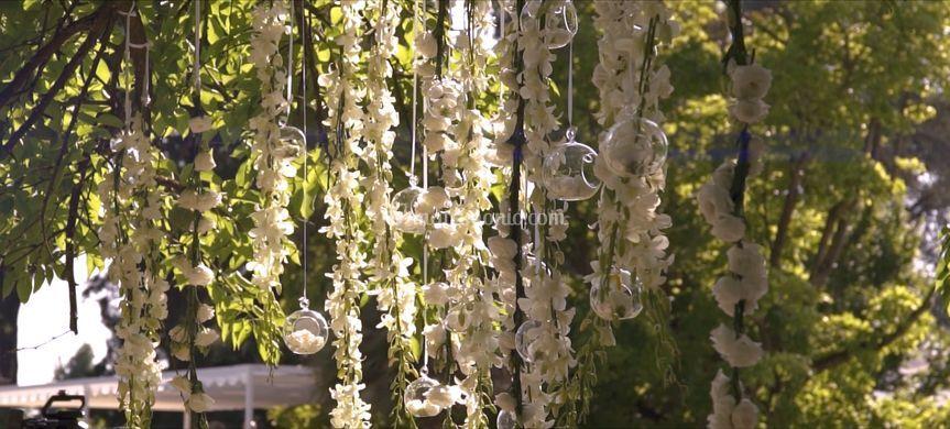 Clip da Video di Matrimonio
