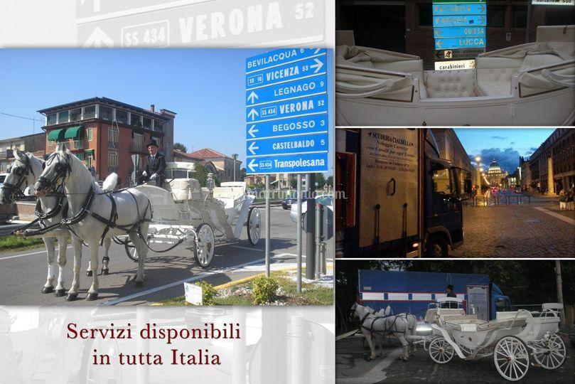 Disponibilità in tutta Italia